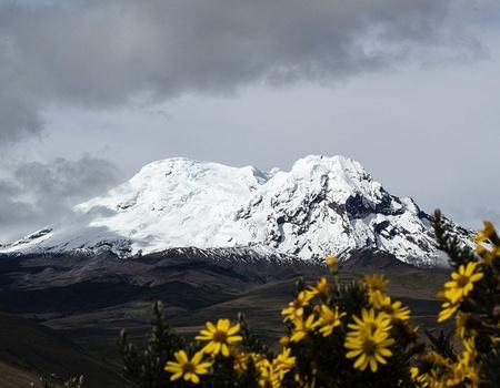 Découverte de l'Equateur et des Galapagos