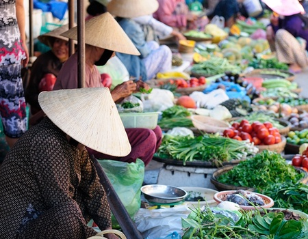 Circuit Douceurs Vietnam