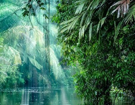 Circuit Le Paradis vert