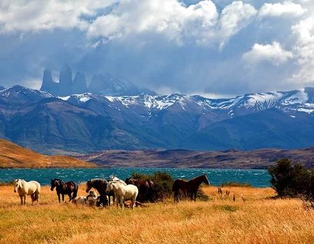 Circuit La Patagonie