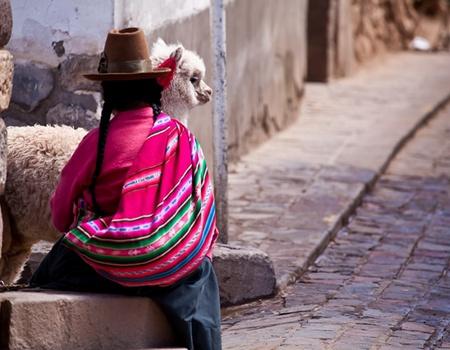 Circuit Douceurs du Pérou