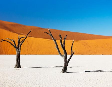 Circuit l'essentiel de la Namibie