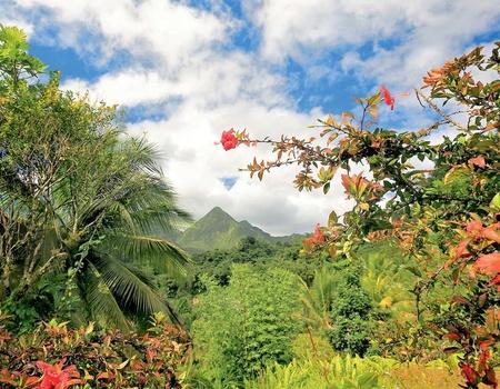 Circuit Échappée Martinique Insolite depuis l'Impératrice Village