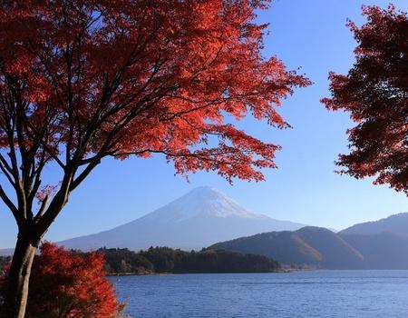 Circuit en liberté: le Japon d'Est en Ouest 3* ou 4*
