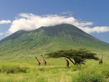 Safari Evasion Sauvage en Tanzanie