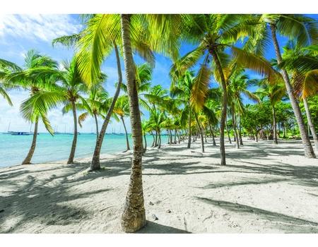 Croisière aux Caraïbes à bord du Costa Favolosa