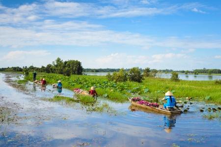 Croisière Du delta du Mékong aux temples d'Angkor