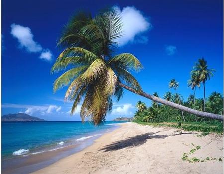 Croisière Douceur des petites Antilles - Départ du 30/01/20