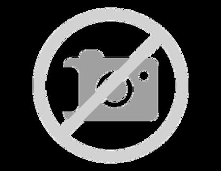 Hôtel Regina Swiss Inn 4*