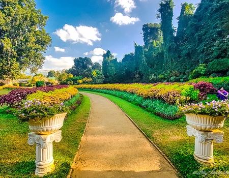 Circuit Stupas et Jardins de thé Privatif 4*