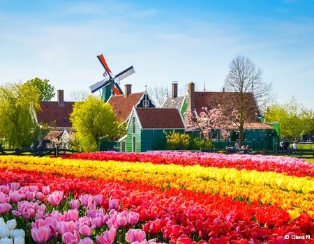 Croisière La Hollande, pays des tulipes (formule port/port)