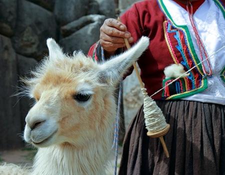 Explorations du Pérou 14J/12N - 2020