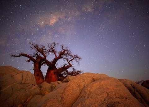Circuit Chemins oubliés d'Afrique Australe (sens Le Cap-Chutes Victoria) - 1