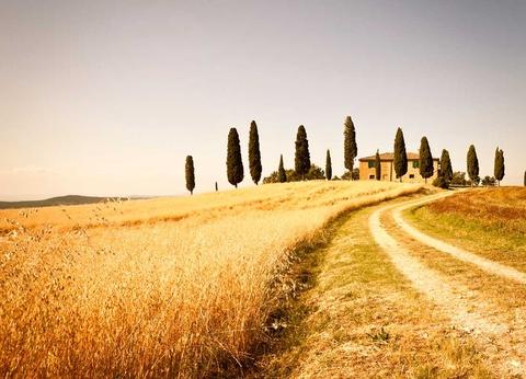 Circuit Au coeur de la Toscane - 1