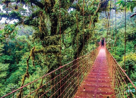 Circuit Le Costa Rica, le Paradis Vert - 1