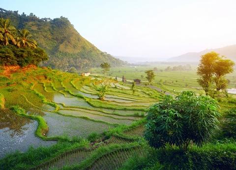 Circuit Splendeurs de Bali & Komodo - 1