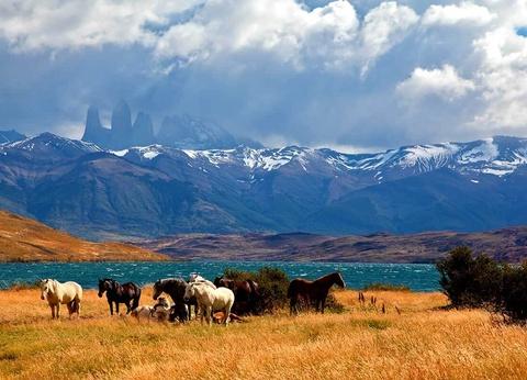 Circuit La Patagonie - 1