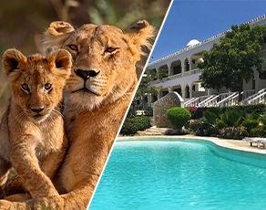 Safari Tsavo East & Club Coralia Jumbo Watamu Resort 4* - 1