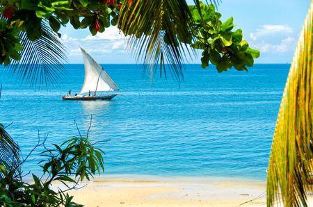 Splendeurs de Tanzanie & extension Zanzibar - 1