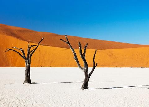 Circuit l'essentiel de la Namibie - 1
