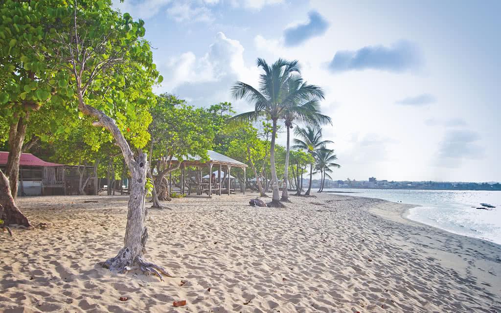 Résidence Tropicale - Location de voiture incluse - 1