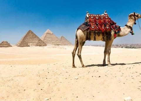 Combiné croisière et hôtel Isis (Caire et croisière Framissima) ***** - 1