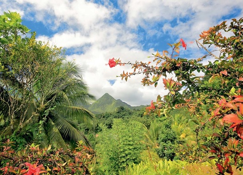 Circuit Echappée Martinique Insolite depuis le Club Héliades l'Impératrice Village - 1