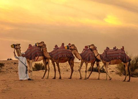 Circuit Le royaume des sables - 1