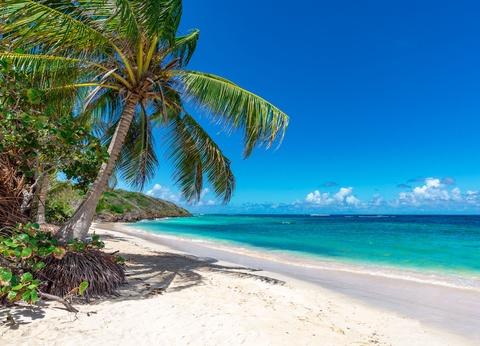 Cocktail d'Iles Tropicales : Guadeloupe, Les Saintes & Marie-Galante - 1