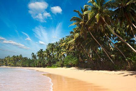 Circuit Splendeurs du Sri Lanka & Extension Sun Island 5* (Maldives) - 13 jours/10 nuits - 1