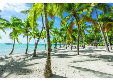 Croisière aux Caraïbes à bord du Costa Favolosa - 1