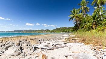 Circuit Costa Rica - Découverte Pura Vida + Extension plage Samara - 1