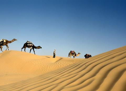 De Tozeur à Djerba - 1
