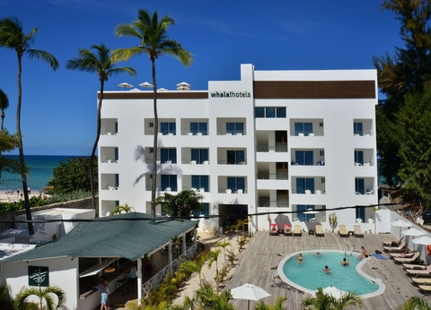Hôtel HM Whala Bavaro Beach 4* - 1