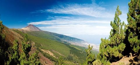 Circuit au coeur de Tenerife 4* - 1