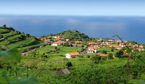 Circuit découverte à Funchal 4* - 1