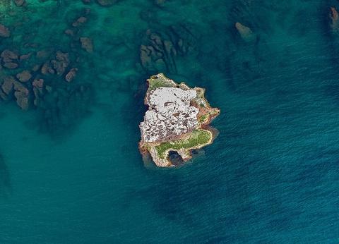 Plongée au Liban - 1