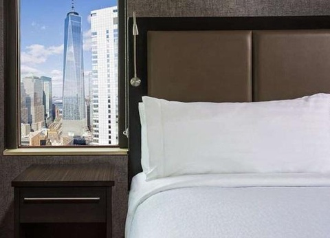 Hôtel Holiday Inn Manhattan Financial District 3* - 1