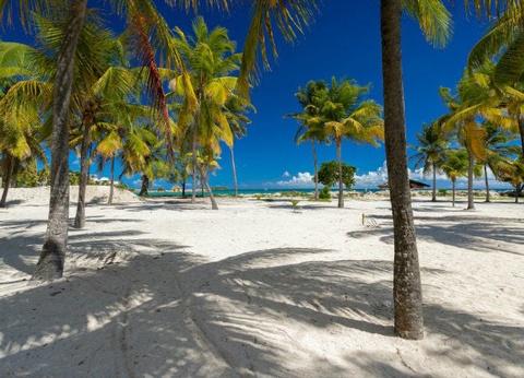 Duo Caraïbes Guadeloupe Martinique : Karibéa Beach Hôtel  3* et Karibéa Saint Luce 3* - 1