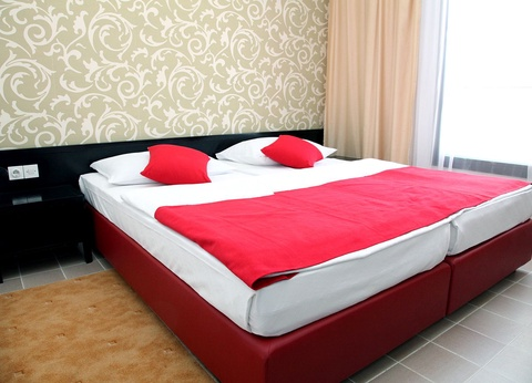 Hôtel Aleksandar 4* - 1