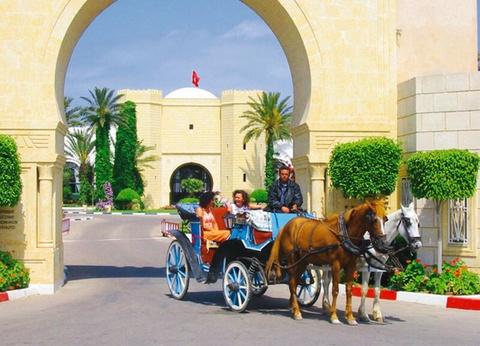 Hôtel Mahdia Palace Thalasso 5* - 1