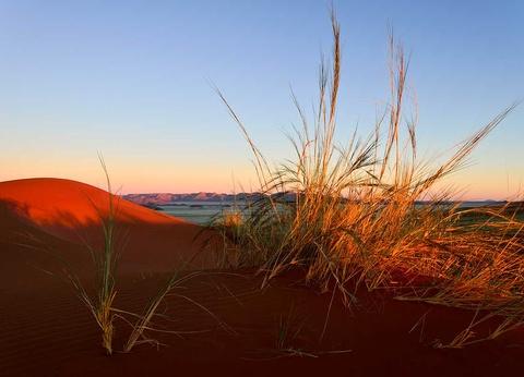 Circuit Envolée en terres australes : du Cap au désert du Namib - 1