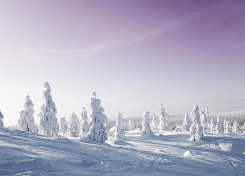 Séjour Igloo et aurores boréales en Laponie - 1