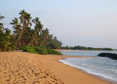 Circuit Splendeurs du Sri Lanka & Extension Kalutara hôtel Tangerine 4* - 13 jours/10 nuits - 1