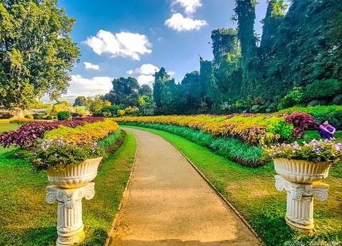 Circuit Stupas et Jardins de thé 4* - 1