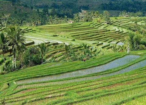 Circuit Bali Essentiel - 1