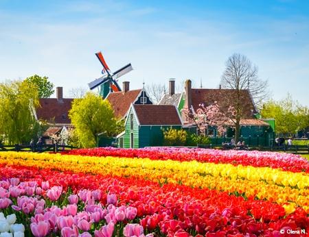 Croisière La Hollande, pays des tulipes (formule port/port) - 1