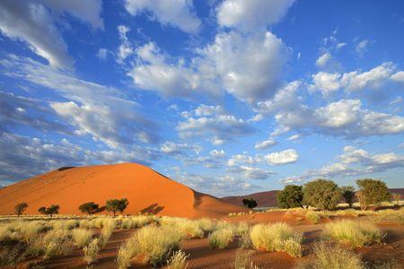 Circuit Splendeurs de Namibie 11J/08N 2019 - 1