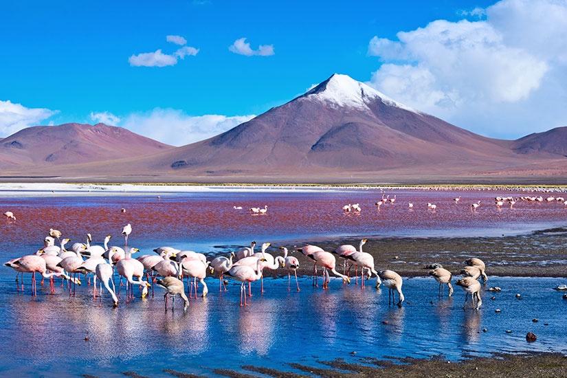 Bolivie - Pérou - Circuit Pérou et Bolivie, Terres des Incas en Hôtels 3*