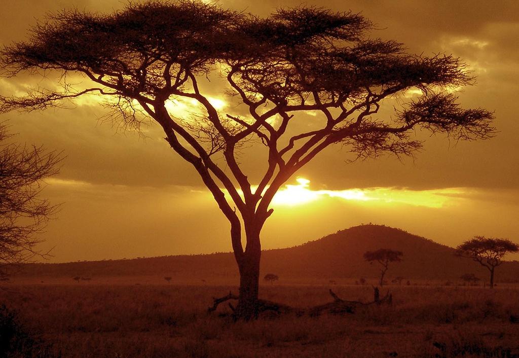 Kenya - Circuit Cap sur le Kenya